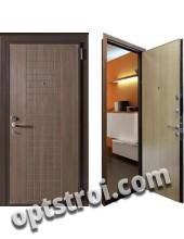Входная металлическая дверь в частный дом. Модель А588-06